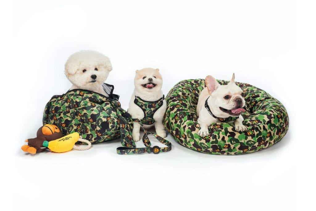 BAPE's Baby Milo Dog Collection - HYPEPETS