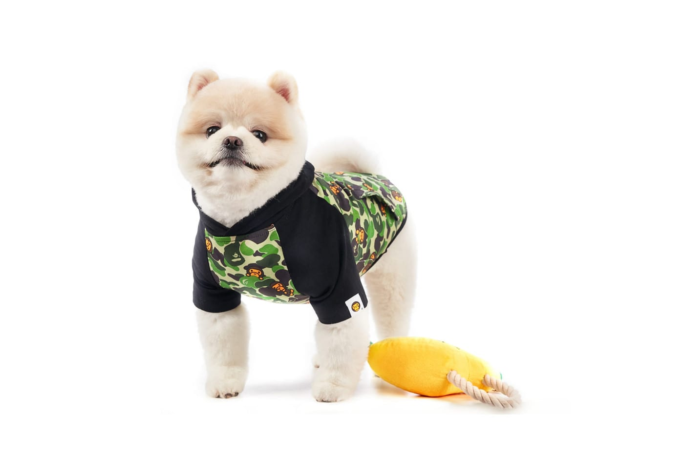 BAPE's Baby Milo Dog Collection