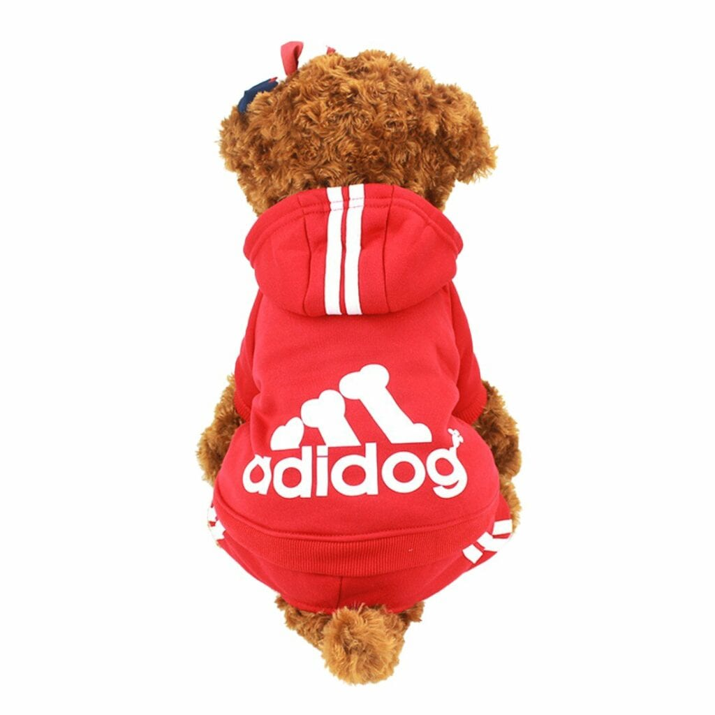 Tracksuits for dogs