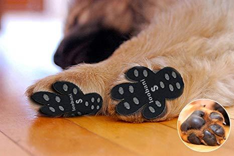 Floor grips for dogs