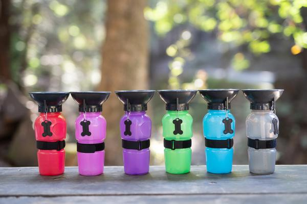 Travel Water Bottles for Dogs