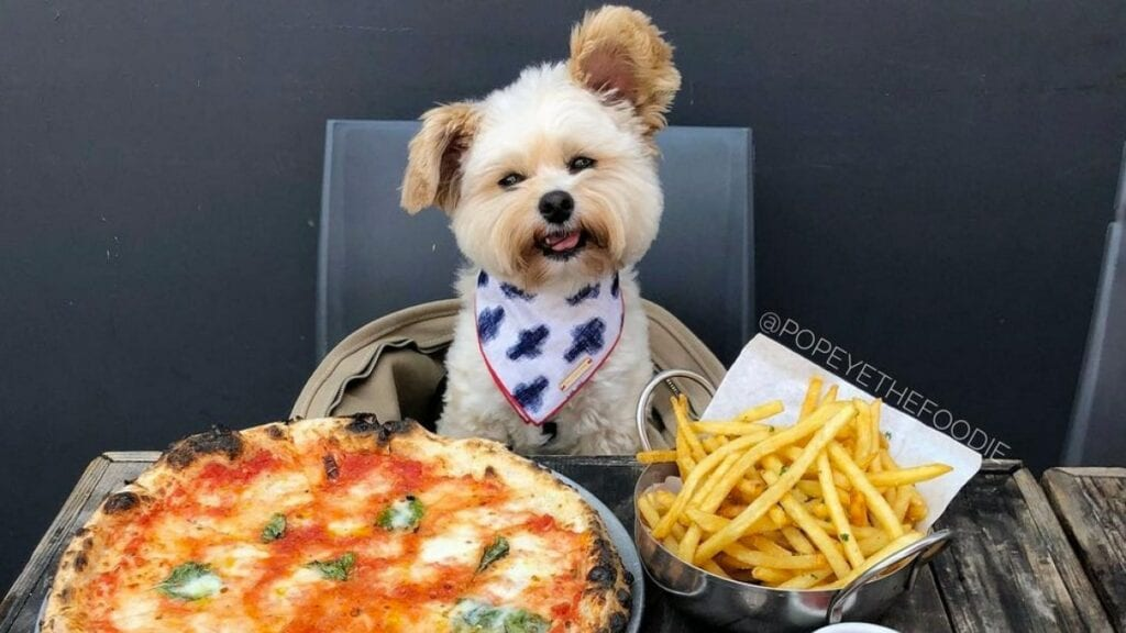 Popeye the Foodie