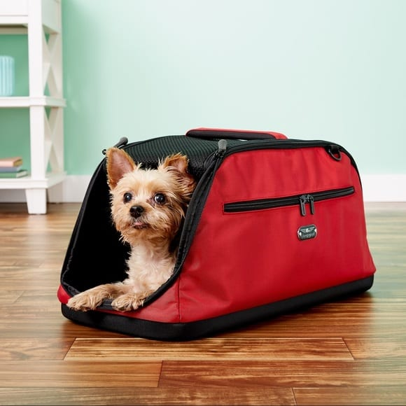 Best Travel Tips for Your Dog